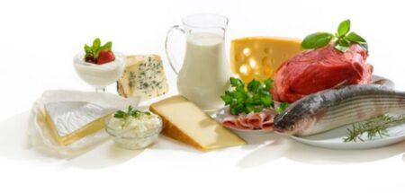 Diferentes tipos de alimentos y fuentes de proteínas para dietas y el gimnasio