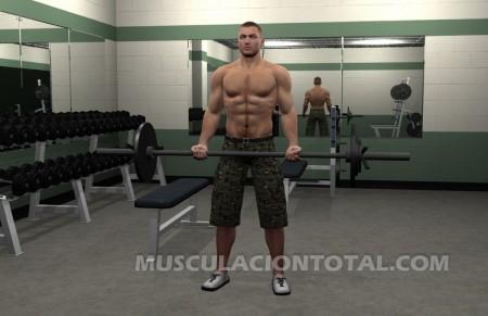Inicio del Curl de Biceps con Barra