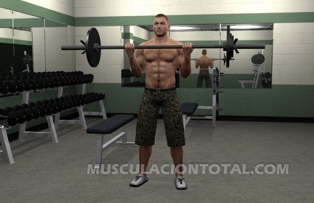 Fin del Curl de Biceps con Barra