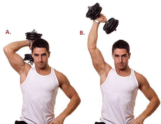 como hacer la extension vertical para entrenar triceps