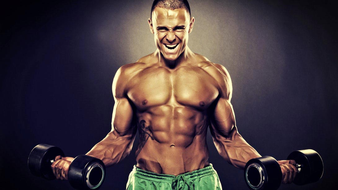 Guía Teórica sobre los Músculos y el Entrenamiento » MT