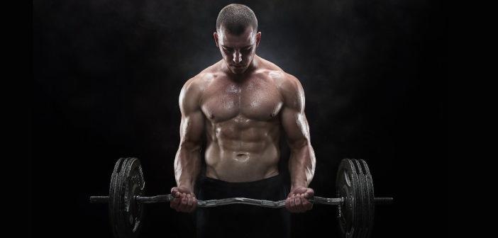 10 consejos sobre musculacion para entrenar en forma optima en el gimnasio