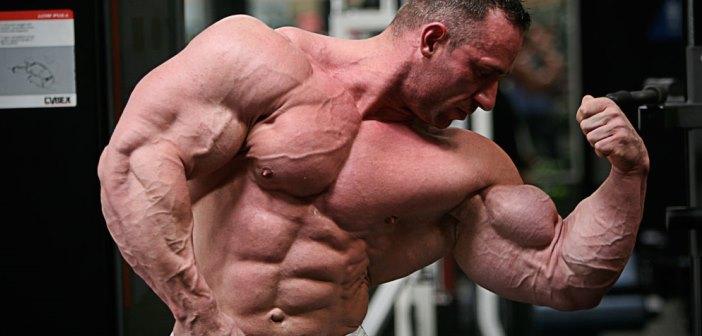 Anatomía de Los Músculos del Brazo y Antebrazo 1