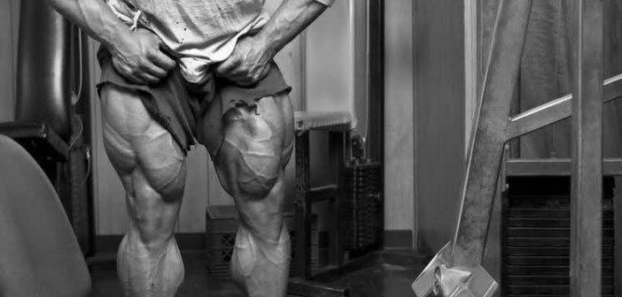 Anatomía de los Músculos de las Piernas » MT