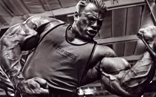 ganador de masa muscular