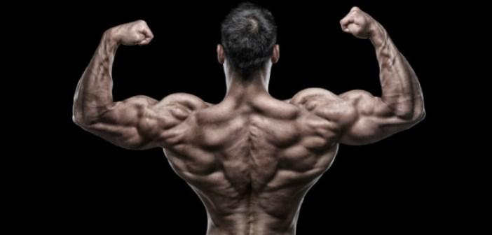 Consejos para entrenar la espalda