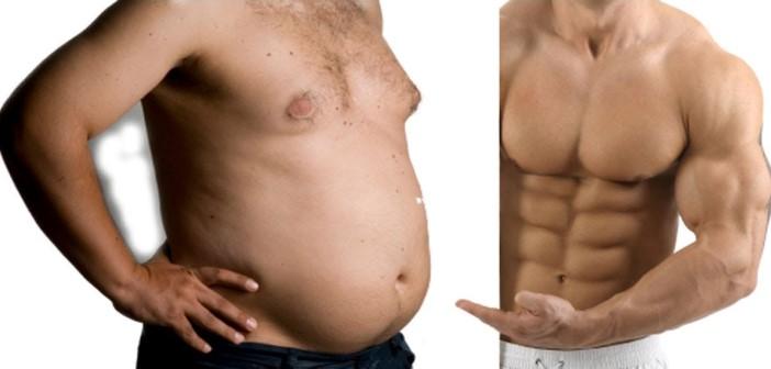 transformar grasa en musculo