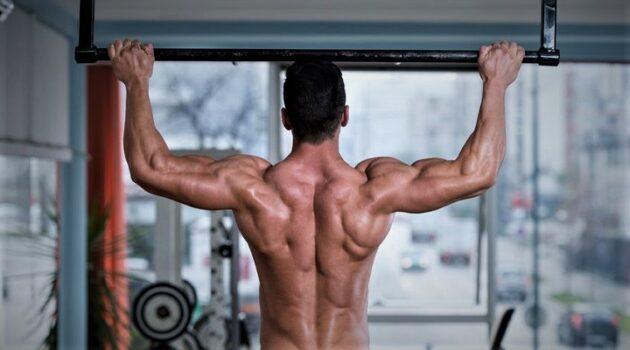 ¿Entrenar espalda con barra o con poleas? ¿Qué es mejor? 2