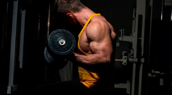 suplementos para desarrollar masa muscular