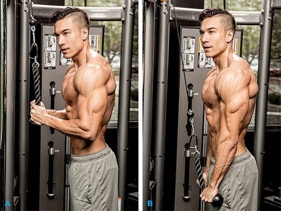 triceps-con-cables