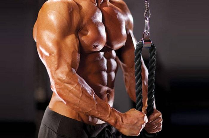 triceps con soga