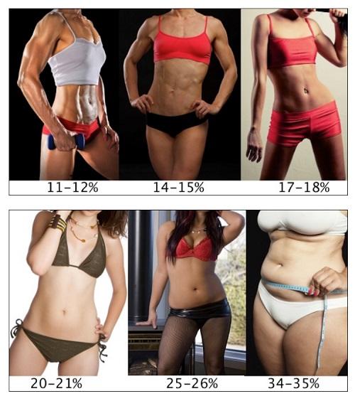 porcentajes-de-grasa-corporal-mujeres