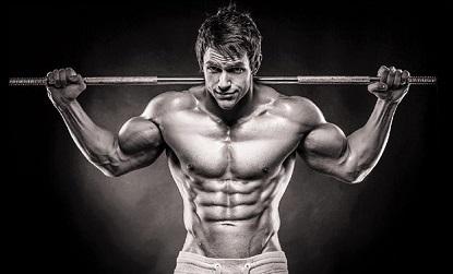 musculaci n total tu blog de entrenamiento