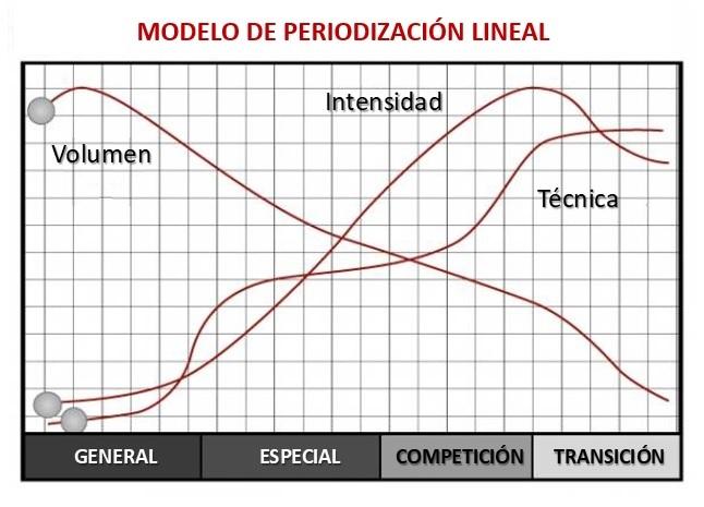 periodización lineal