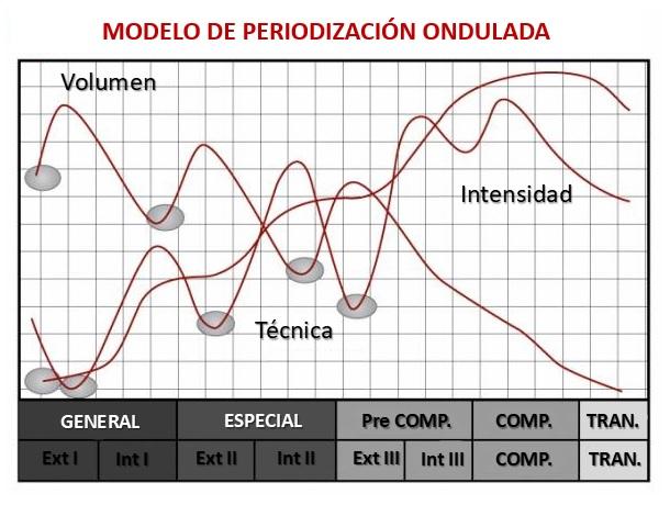 periodización ondulada