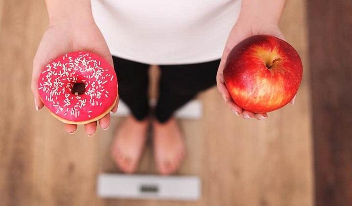 alimento vs nutriente