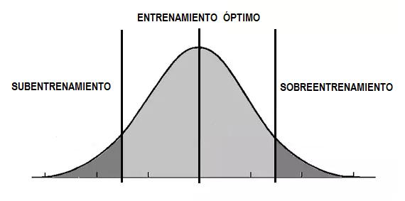 curva de entrenamiento