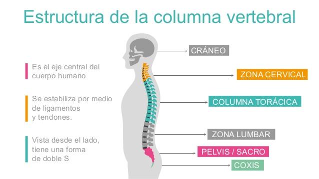 Podchufarova e.v yahno n.n el dolor en la espalda