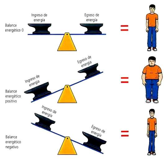 balance de energía y el peso