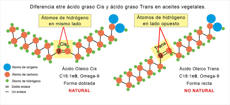 ácido graso cis y ácido graso trans