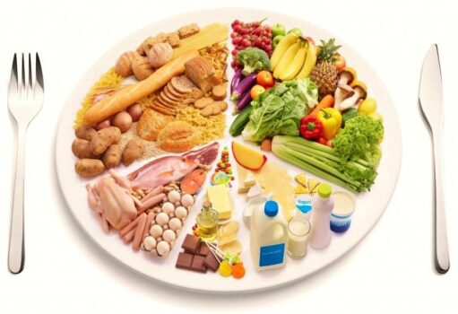 optimizar dieta